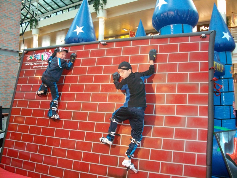 Spider Climbing Wall Image